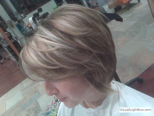 Blended Hair Color Hair Color Highlights And